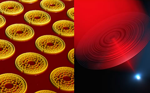 Nanophotonics & Metamaterials Group
